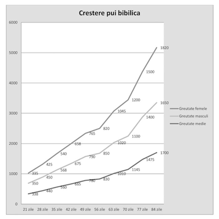 grafic-bibilica